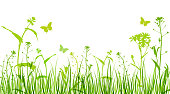 Green floral background with silhouettes of flowers and grass