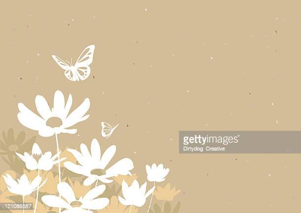 Fleurs & des papillons