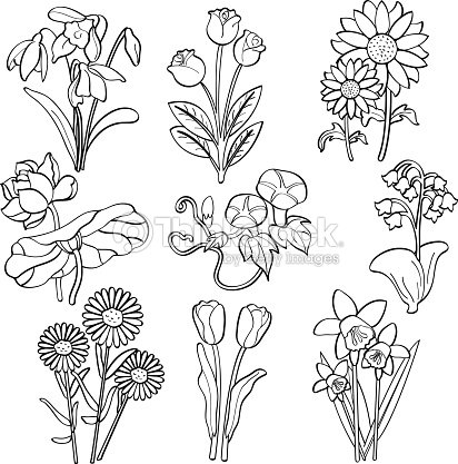 Blumen Vektorgrafik | Thinkstock