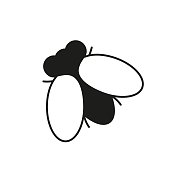 Fly insect icon on the white background
