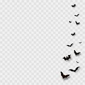 Flying bats on transparent background. Vector