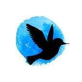 flying bird silhouette at watercolor background, hand drawn songbird and sky