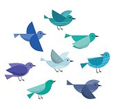 Set of different cute flying birds. Vector illustration isolated on a white background.