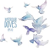 Group of watercolor flying doves isolated on white background