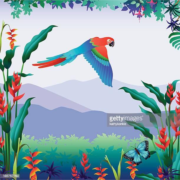 flying Papagei tropischen Blick auf die Berge