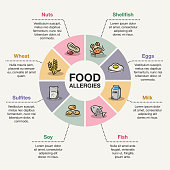 Vector infographic template for food allergies.