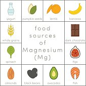 Food sources of magnesium, vector flat food icons for infographic