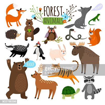 Forest animals set : Arte vetorial