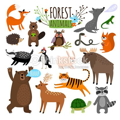 Forest animals set : stock vector