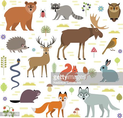 Forest animals : stock vector