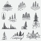 Hand drawn forest logo badge set. Retro collection of outdoor wildlife adventure company
