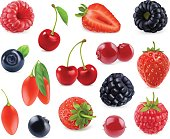 Forest berry. Sweet fruit. 3d vector icons set. Realistic illustration