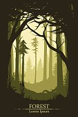 Forest illustration background in vector