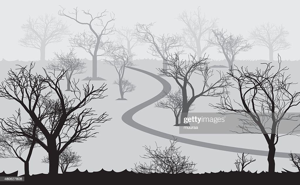 forest nel buio e strada, alberi modelli : Arte vettoriale