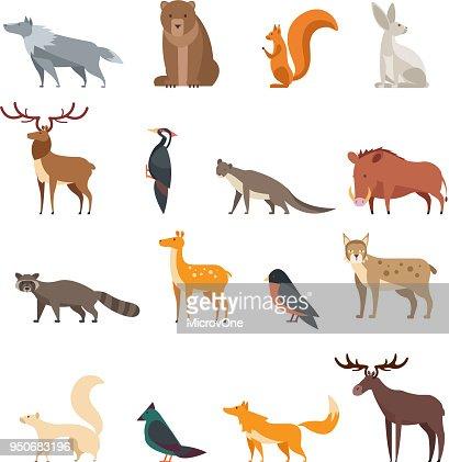 Forest wild animals and birds cartoon vector set isolated. Flat deer, bear, rabbit, squirrel, wolf, fox, raccoon, owl : stock vector