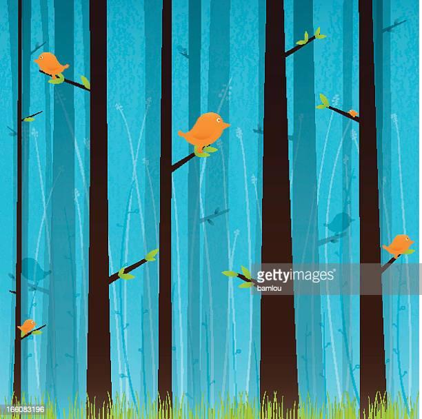Forest with orange birds