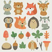 Vector forest set with cute hare, bear, fox, deer, owl, squirrel, hedgehog, wolf, bird, mushrooms, nuts and leaves in cartoon style