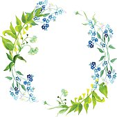 Forget-me-not and meadow herb watercolor round vector frame