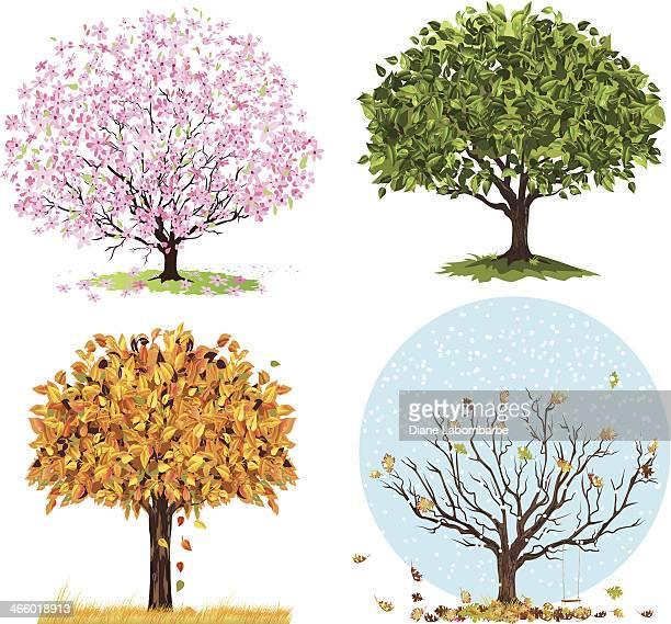 Four Seasons arbres