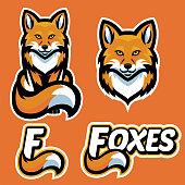 vector of fox mascot character set