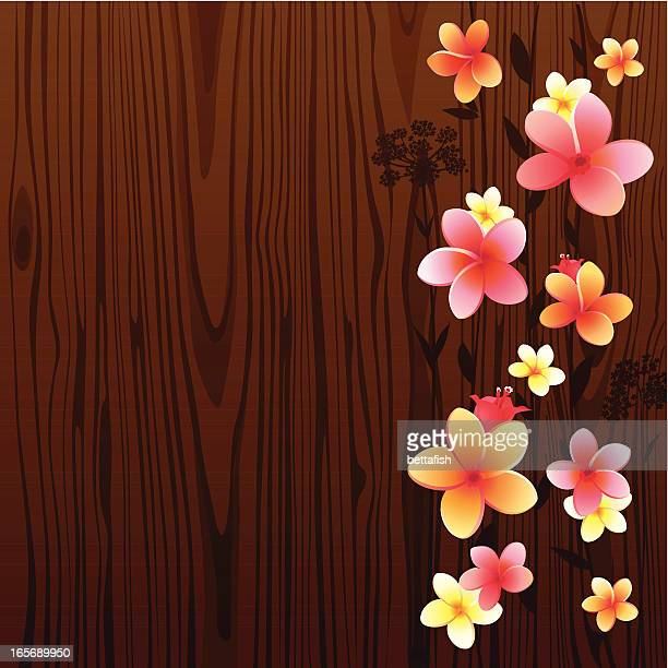 Frangipani (Plumeria) auf Holz