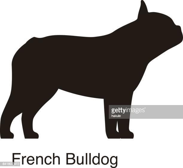 French Bulldog Stock Illustrations And Cartoons | Getty Images