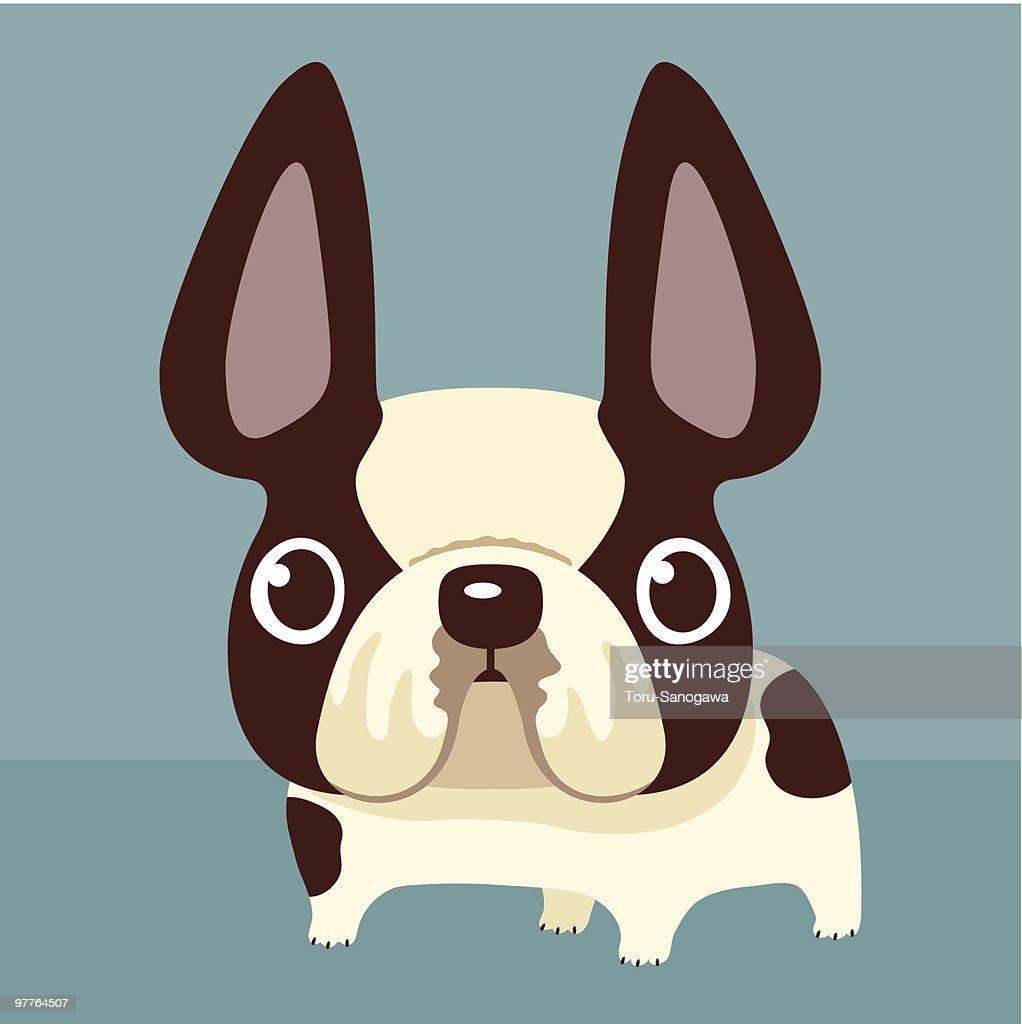 French Bulldog : Vector Art