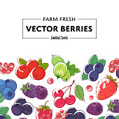 Fresh and juicy berries retail poster with ripe raspberry, blackberry, strawberry, gooseberry, currant, blueberry and cherry. Natural organic farming, healthy food, vegan nutrition vector illustration