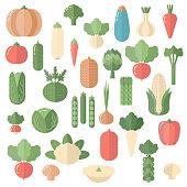 Fresh organic vegetable isolated on white background. Flat design.