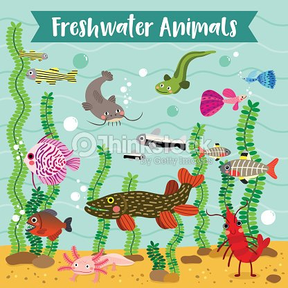 Freshwater Animals cartoon with underwater background vector illustration.