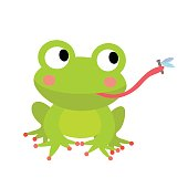 Frog eating fly animal cartoon character. Isolated on white background. Vector illustration.