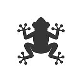 Frog Icon Logo on White Background. Vector illustration