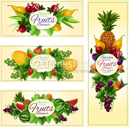 Fruit and berry banner for diet food, drink design