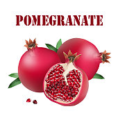 Fruit Pomegranate White Background Vector Image