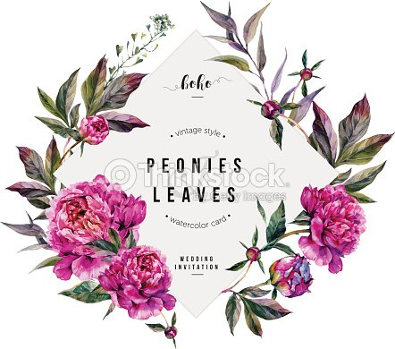 Fuchsia Peonies Greeting Card : stock vector