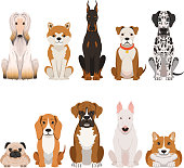 Funny dogs illustrations in cartoon style. Domestic pets animal dog, funny vector breed cartoon dog