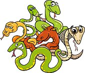 Cartoon Illustration of Funny Snakes Wild Animal Characters Group