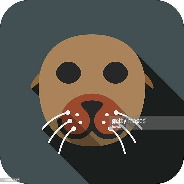 Fur Seal animal face flat design