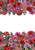 Garden flowers and leaves seamless border. Floral romantic colorful wallpaper for on white background.