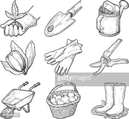 Garden Tools And Things Vector Art Thinkstock
