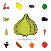 garlic colored icon. fruit icons universal set for web and mobile on white background