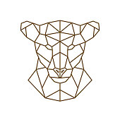 Geometric head of a lioness. Wild animal. Vector illustration.
