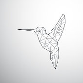 Geometrical Colibri,connected lines and dots, bird