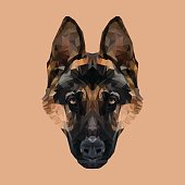 German Shepherd dog low poly. Vector illustration. Low poly triangles.