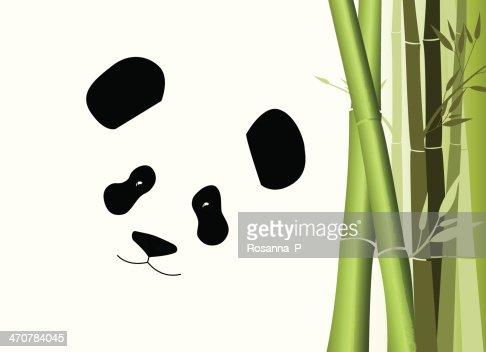 Giant Panda Bear Und Bambus Vektorgrafik Thinkstock