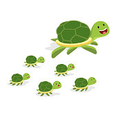 Vector illustration of giant turtle and baby turtles