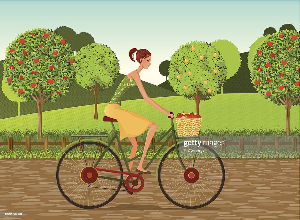 Girl with bike and apples in Countryside : Vector Art