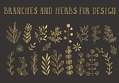 Gold herbs and branches for design. Handdrawn vector illustration. Golden floral background.