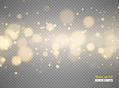 Golden bokeh lights with glowing particles isolated. Vector illustration