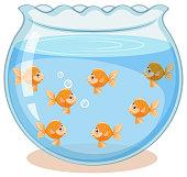 Golden fish in the tank illustration